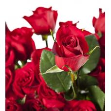 Composició floral de roses vermelles